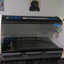 pet-brooder yoğun bakım kabini